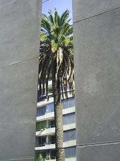 Plaza Italia o Baquedano